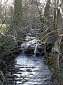 Small waterfall on Mohope Burn - geograph.org.uk - 704842.jpg