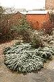 Snow in February - geograph.org.uk - 1714189.jpg