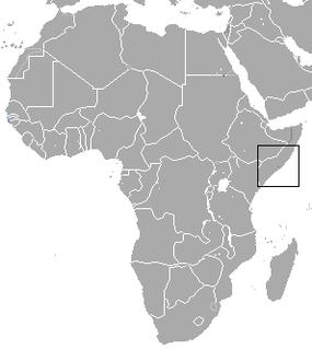Somali golden mole species of mammal