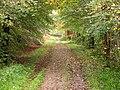 Speyside Way, Dufftown spur - geograph.org.uk - 273511.jpg