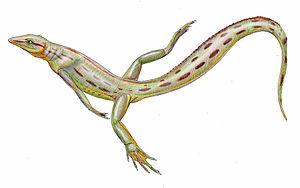 Sauria - Image: Spinoaequalis schultzei reconstruction