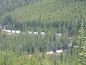 Forestry in Canada - Spruce forests in British Columbia