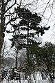 Square Samuel-de-Champlain (Paris) sous la neige, vu depuis l'avenue Gambetta 07.jpg
