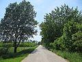Stari kaćki put - panoramio (1).jpg
