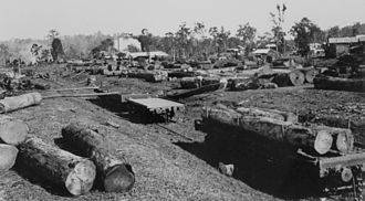 Ravenshoe, Queensland - Lumber yard at a Ravenshoe sawmill, 1934