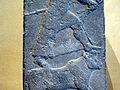 Stele of Adad 0237.jpg