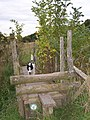 Stile and Footbridge on Medway Valley Walk - geograph.org.uk - 1101840.jpg