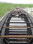 Still boat in Chars of Jamuna river at Bogra 07.jpg