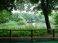 Stockeld-Park-03.JPG