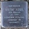 Stolperstein Genthiner Str 46 (Tierg) Helene Asriel.jpg