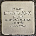 Stolperstein für Agnes Lefkovits (Nyíregyháza).jpg