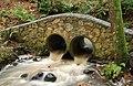 Stone bridge, Clare Glen, Tanderagee (3) - geograph.org.uk - 1590584.jpg