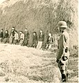 Streljanje rodoljuba i nemackog vojnika koji je odbio naredjenje, Smederevska Palanka 1941. (5).jpg