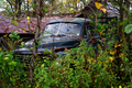 Studebaker - West Virginia - ForestWander.png
