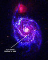Supernova SN 2005cs.jpg