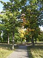 Svartsjö slott, parken, vy mot öster, 2016b.jpg