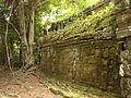Ta Prohm - Angkor - Cambodia - 03.JPG