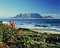 Table Mountain - South Africa (2418536788).jpg