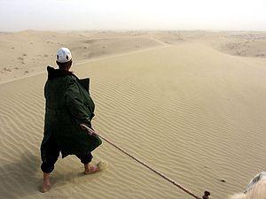 Taklamakan Desert - Desert life near Yarkand