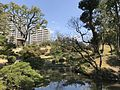 Takueichi Pond and Yunenjo Fields in Shukkei Garden.jpg