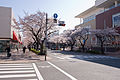 Tama-Plaza Station 03.jpg