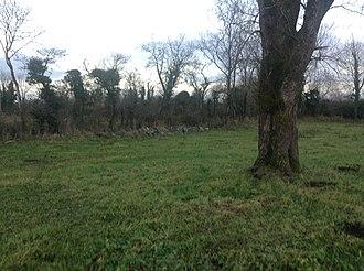 Plague of Mohill - Tamlaghtavally townland, Mohill Parish, County Leitrim
