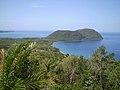 Tanetane-Dominica.jpg