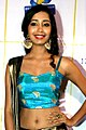 Tarika Tripathi attends the 17th Transmedia Gujarati Screen and Stage Awards in Mumbai (19) (cropped).jpg