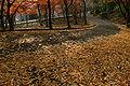 Tatsuno park03bs3200.jpg