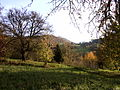 Teck, Naturschutzgebiet Kreis Esslingen, Baden Württemberg.jpg