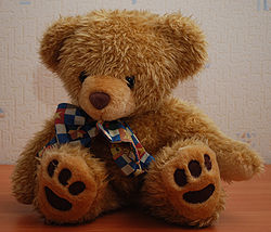 Teddy Bear 45 right flash.jpg