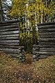 Tenholan linnavuori, Hattula, Finland (48934342143).jpg