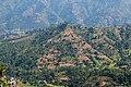 Terrace Farming in Nepal in Rakathum VDC-0363.jpg