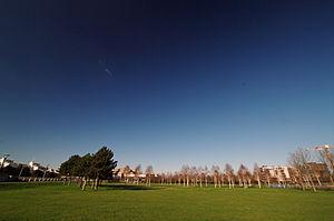 Thames barrier park 02.02.2012 15-38-58.JPG