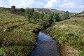 The Afon Bidno - geograph.org.uk - 968308.jpg