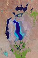 The Aral Sea - Flickr - NASA Goddard Photo and Video.jpg