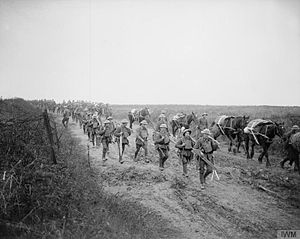 Royal Ulster Rifles - Men of the 16th (Service) Battalion, Royal Irish Rifles, the pioneer battalion of the 36th (Ulster) Division, moving to the frontline 20 November 1917.