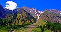 The Beauty of Naltar Valley, Dist. Gilgit, GB.jpg