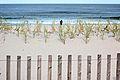 The Boardwalk (9027558613).jpg