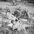 The British Army in the Normandy Campaign 1944 B7579.jpg