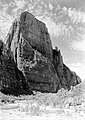 The Great White Throne and the Virgin River. ; ZION Museum and Archives Image 13430 ; ZION 13430 (e00880cb1ce94b35a439a6c8a7d34e62).jpg