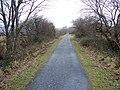 The Mawddach Trail looking towards Morfa Mawddach - geograph.org.uk - 1092425.jpg
