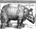 The Rhinoceros.png