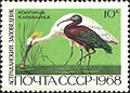 The Soviet Union 1968 CPA 3676 stamp (Eurasian Spoonbill and Glossy Ibis (Astrakhan Nature Reserve)).jpg