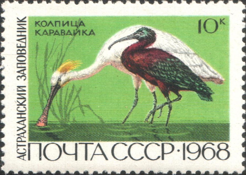The Soviet Union 1968 CPA 3676 stamp (Eurasian Spoonbill and Glossy Ibis (Astrakhan Nature Reserve))