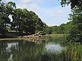 Tidal part of River Hamble looking upstream towards Curbridge - geograph.org.uk - 219781.jpg