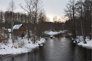 Priozersky District - The Tikhaya River near Brigadnoye in Priozersky District