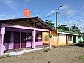 Tortuguero, Limón Province, Costa Rica - panoramio (16).jpg