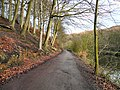 Track to Beacon Wood - geograph.org.uk - 1614251.jpg