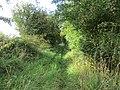 Track to Danebury Manor (geograph 5526622).jpg